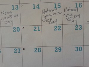 Calendar special days