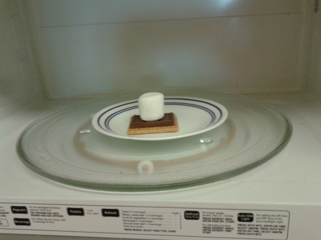 Place one graham cracker square, topped with a section of a Hershey's bar and a marshmallow in a microwave.